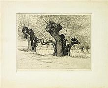 G.M. Wilson (XX) - untitled - Autumn Trees 23.5 x 31cm
