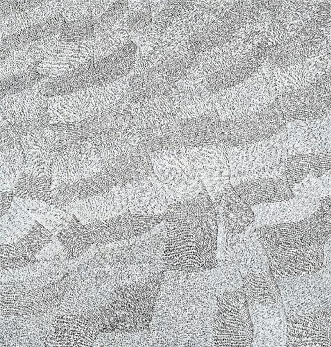 LILY KELLY NAPANGARDI (CIRCA 1948 - ) - Sandhills, 2005 184 x 175 cm