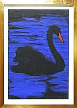 Peter Cooley (1956 - ) - Black Swan 75 x 106cm
