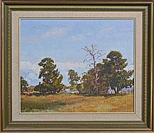 Warwick Fuller (1948 -) - Homestead at Castlereagh, 1978 49 x 59cm