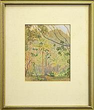 Robert Campbell (1902 - 1972) - Rainforest Scene, 1933 21 x 17cm