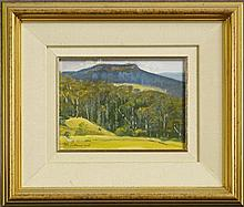 Neville Connor (1939 - ) - The Plateau, Kangaroo Valley 13 x 18cm