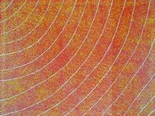 Kathleen Petyarre (1940 - ) - Bush Seeds Dreaming 119 x 94cm