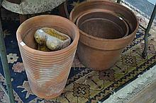 Small Collection Of Terracotta Pots