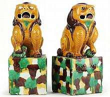 Pair of Chinese Buddhist Lions
