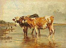 Antonio Montemezzo, Two Calves