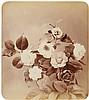 Adolphe Braun, Fleurs Photographiées, 1854