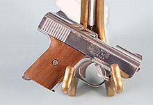 RAVEN ARMS MP-25