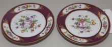 Pair of hand painted Continental plates .