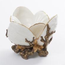 Worcester Porcelain Oyster Shell Bowl