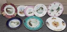 Collection of 8 souvenir plates
