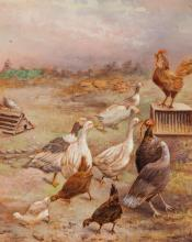 19th century, Birds in farmyard, oil on board, unsigned, 8 1/2 x 7 inches