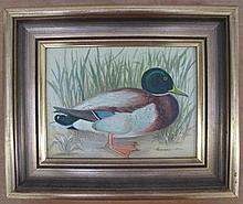 Francis Jones Oil board Mallard Duck 14.5 x 19.2cm