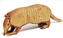 AN ANTIQUE TAXIDERMIC NINE-BANDED ARMADILLO, 30cm