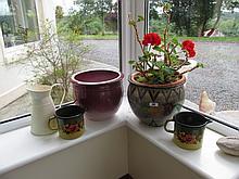 Plant Pot with Floral Decoration Enamel Floral Jug