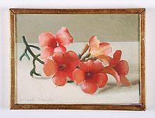 Vincente Viudes (1916-1984)