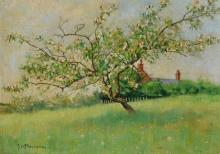 John Whitehall Parsons, 1859 - 1937 (British
