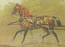 A PAIR OF COLOURED LITHOGRAPHS, depicting Horse
