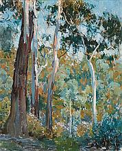 EMANUEL PHILLIPS FOX (1865-1915) Blue Gums