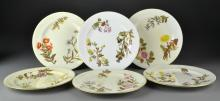 (6) Pcs Antique Royal Worcester Porcelain Dinner Plates