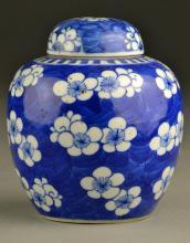 Chinese Qing Blue & White Porcelain Lotus Jar