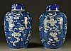 Pr. Chinese Qing Blue & White Porcelain Jars
