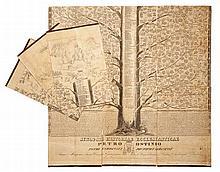 Albero genealogico - Storia della Chiesa
