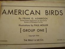 1932  American Birds by Frank Ashbrook