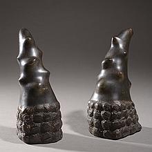 Paire de cornes de rhinocéros