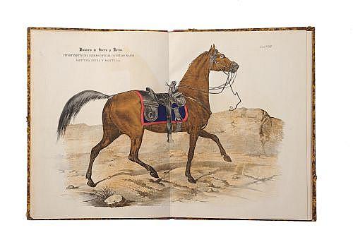 Ministerio de Guerra y Marina. Modelos de Uniformes Mexicanos. México: Ca. 1890. 20 láminas a doble página de uniformes y acsesorios.