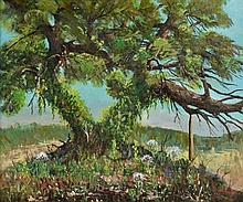 CARL THOMAS HOPPE, (American, 1897-1981), The Coppini Tree, Broadway & Arcadia, 1965, Oil on canvas, H 19½ x W 23¼ inches.