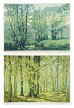 DAWN MATTHEWS, (American, 20th century), New Abbey Wood, ed. 9/175 New Abbey Row, ed. 21/175, Lithographs (two works), H 17 x W 22¾...