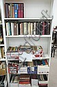 Fifteen boxes of books in white bookcase; Literary Criticism and Social Science.