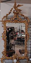 Reproduction Chippendale style gold gilt mirror with phoenix bird top. ht. 62in.; wd. 31in.