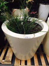 4' x 4' White Planter with Red Yucca