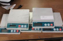 (5) Taylor (TE10C) Scales
