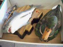 Box of Fish & Ducks