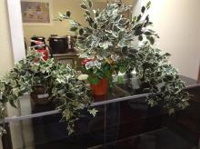 (3) Artificial Plant Decor