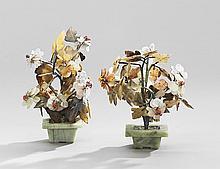 Pair of Jade Trees