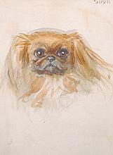 "20th Century English School. ""Susie"", a Pekinese, Watercolour, Inscribed, 8"" x 6"", together with Two"