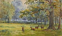 """Squire Howard (19th – 20th Century) British. Deer in a Wooded Landscape, Watercolour, Signed, 5.5"""" x"""