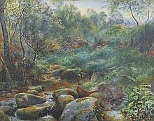 "Tom Hold (19th – 20th Century) British. A Pheasant, in a Rocky River Landscape, Oil on Canvas, 15"" x"