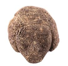 Eskimo Carved Whale Bone