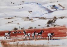 Montana Antelope Original Painting by Fred Fellows
