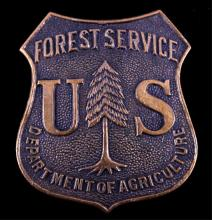 U.S. Forest Service Ranger Badge