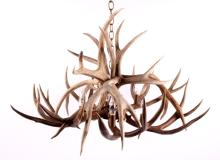 Montana Made Deer Antler Chandelier