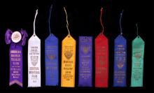 1920's-30's Montana Fair Ribbon Collection