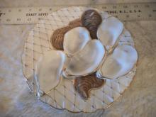 Haviland & Co. Oyster Plate - 5 Wells - Limoges France - Turkey Pattern - 1880 - 8 3/4