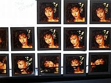 AMII STEWART Professional 13 transparencies