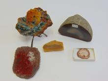 Petrified Wood Lot with Agate and Crystal